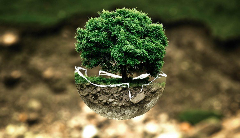 Životné prostredie – významný indikátor pri výbere miesta na život